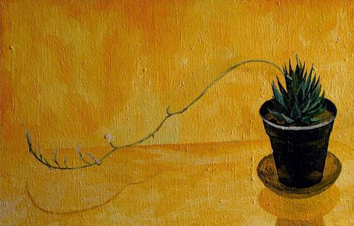 """""""Кактус в желтой комнате"""" ::: Наира Рустамова"""