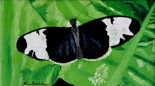 """Бело-черная бабочка"" ::: Наира Рустамова"